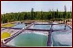 Bio-Gas Cover